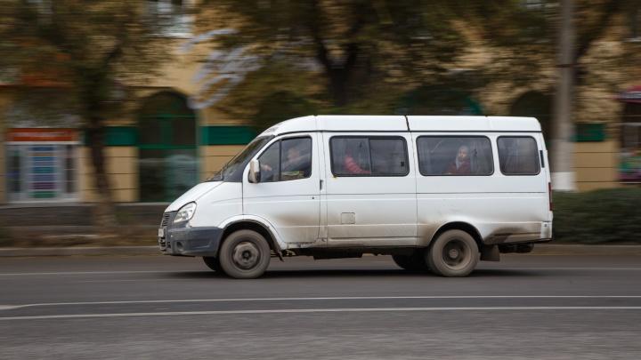 На дороги Волгограда вернули еще две маршрутки