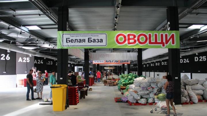 Убрать перекупов: в Толмачёво открылся необычный рынок — чем там торгуют фермеры
