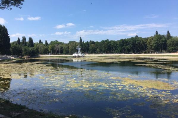 Парк 50-летия Октября — одно из излюбленных мест отдыха жителей Металлурга