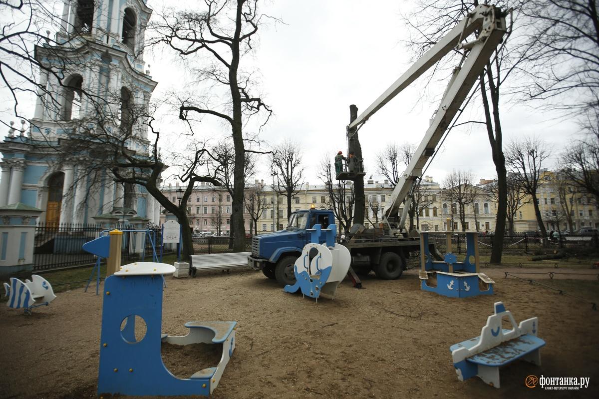 Природа не давала даже намёка на то, что может начаться зима. Санкт-Петербург, 21 января 2020 года