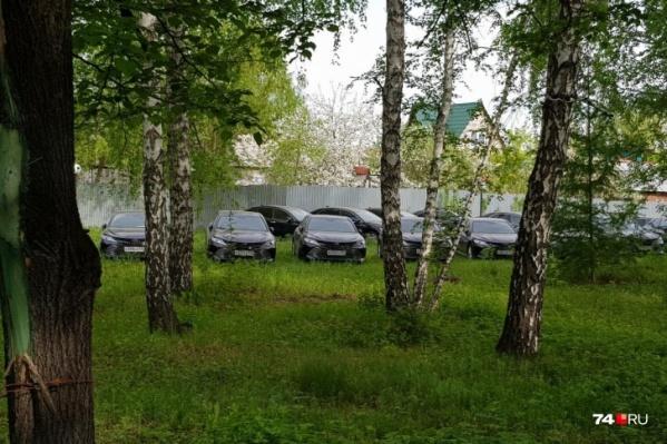 В лесном массиве неподалёку от озера Смолино обнаружились десятки новых Toyota Camry