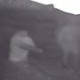 В Уфе мужчина напал с пистолетом на 26-летнего парня, инцидент попал на видео
