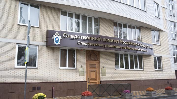 В Ростовской области 8-летняя девочка выстрелила в младшую сестру