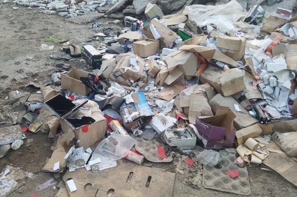В одной куче оказались документы, коробки банка и хозяйственные отходы