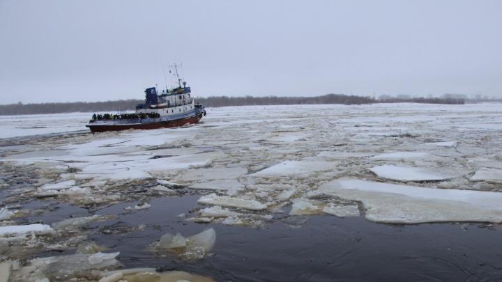 На островные территории Архангельска начинают ходить буксиры. Публикуем расписание