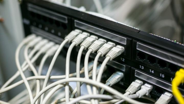 Похититель интернет-кабеля убил случайного свидетеля, пытавшегося его остановить