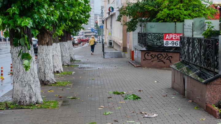 МЧС предупреждает о грозах и усилении ветра в Прикамье