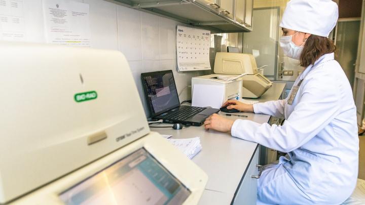 В Свердловской области еще 53 человека заразились коронавирусом