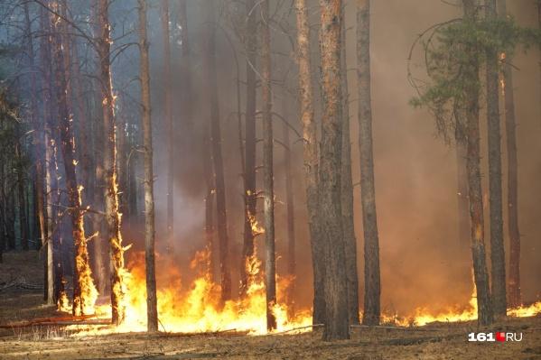 Из-за пожара погиб один человек