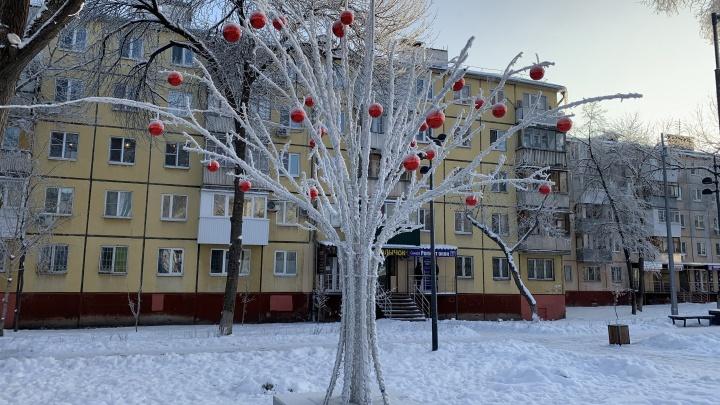 Дерево с яблоками: в сквере на Авроры установили новогоднюю иллюминацию