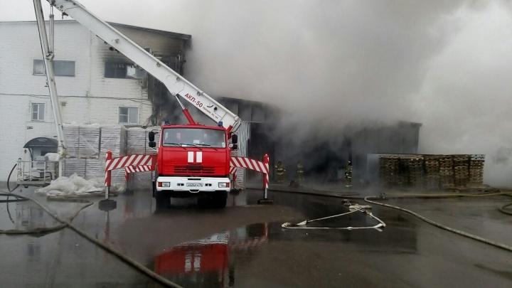 Тушили 13 часов: в поддержку сгоревшей шоколадной фабрики запустили флешмоб