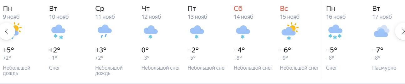 В Новосибирск идет климатическая зима