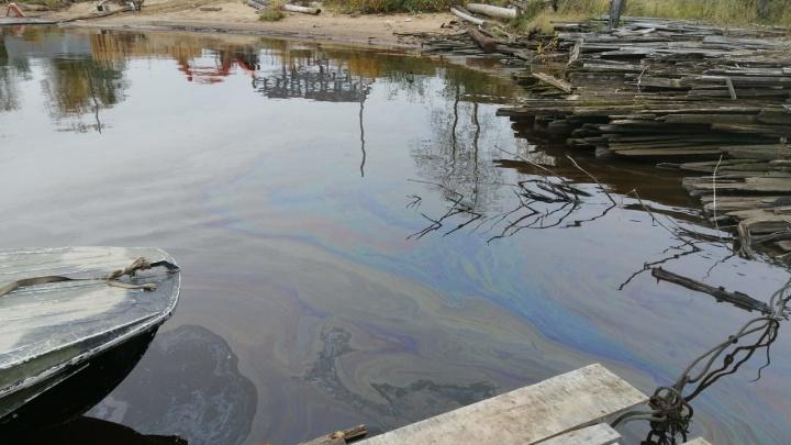 В МЧС назвали предварительную причину образования радужной пленки на реке около Кегострова