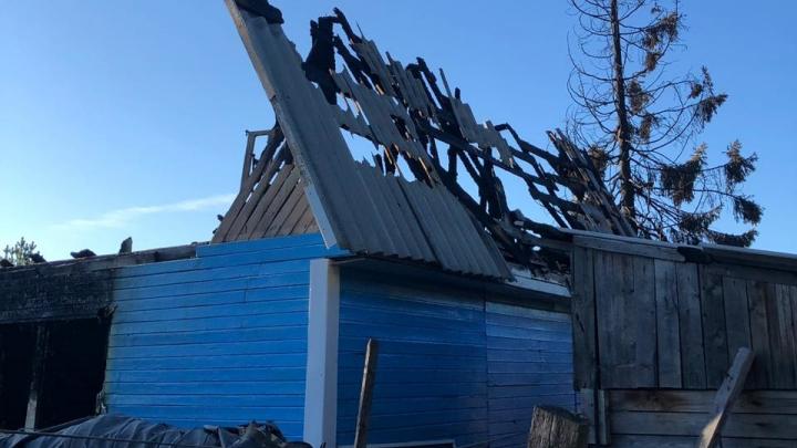 Пока собирали ягоды и косили траву: в Приморском районе сгорела дача