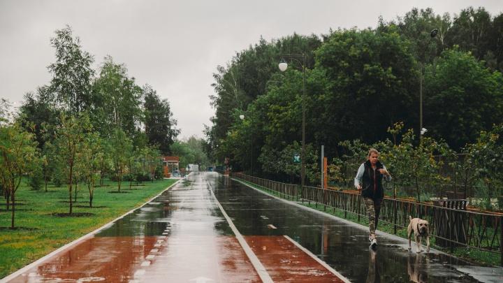 Почему в Тюменскую область пришли дожди и будет ли еще тепло? Объяснили синоптики