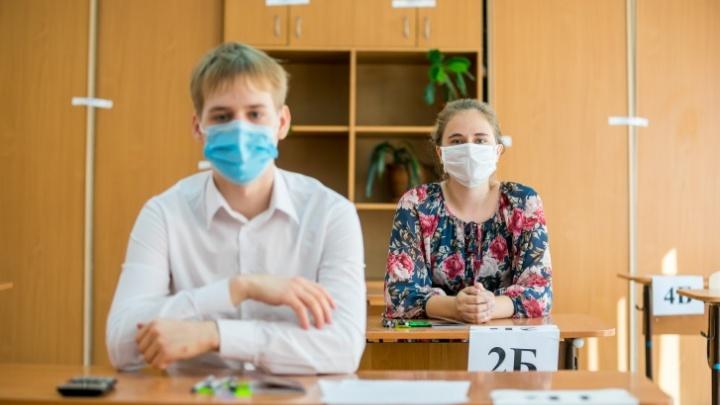 Резко поумнели: новосибирские власти подсчитали число школьников, написавших ЕГЭ на 100 баллов