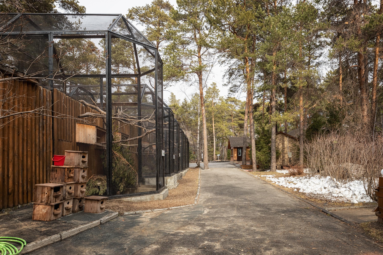 Новосибирский зоопарк не работает с 28 марта
