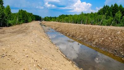 Челябинску — труба: репортаж с «нового» Долгобродского канала, на котором бобры построили плотину