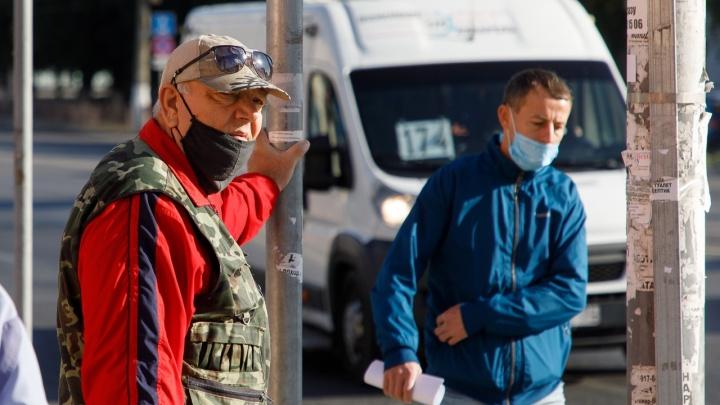 Чтобы не толкались и не переохлаждались: в Волгограде и области с 1 ноября отменят дачные автобусы