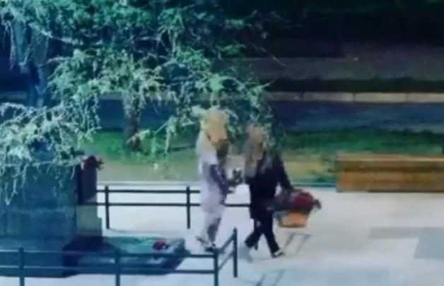 «Поросячий поступок»: девушки под покровом ночи унесли корзины с цветами от памятника ветерану
