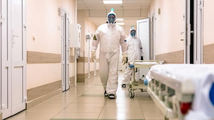 Ситуация с коронавирусом в Перми на 19 мая: COVID-19 выявили еще у 52 человек, в трех случаях — посмертно