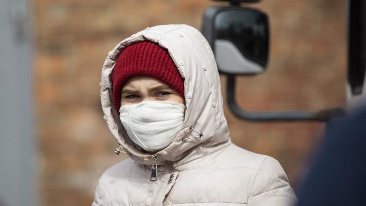 В Ярославской области за сутки ещё у пяти человек выявили коронавирус