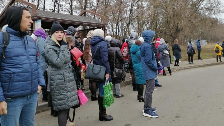Едут только на бумаге. Почему жители Суворовского вынуждены часами ждать автобусы на остановках