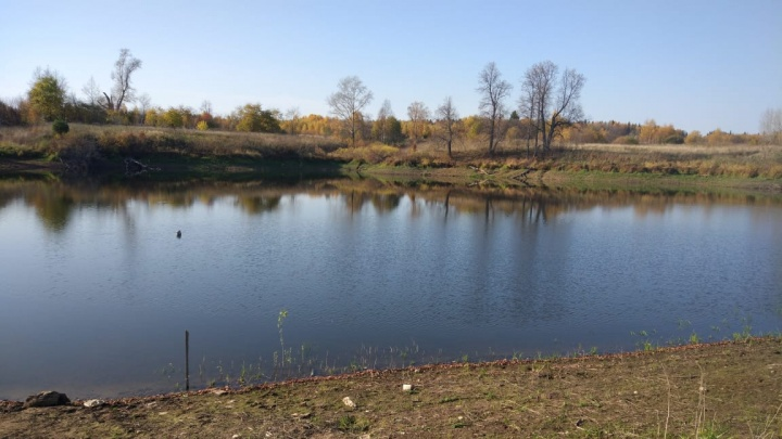 Власти наконец пообещали построить водопровод в поселке Щучье Озеро. Но пока сюда привозят мутную воду