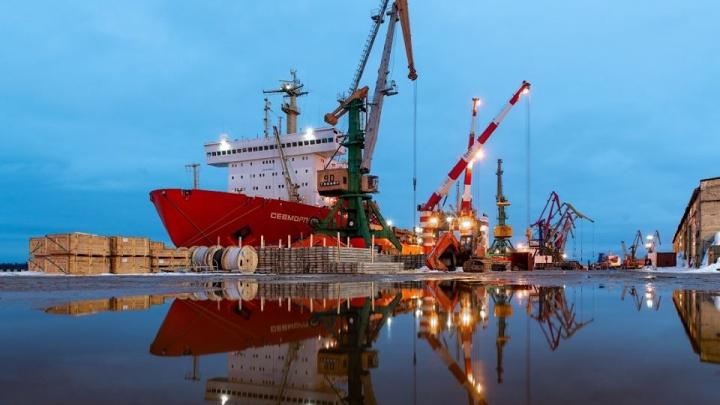 Цветные ворота в снежную Арктику: яркий фоторепортаж из Архангельского морского торгового порта