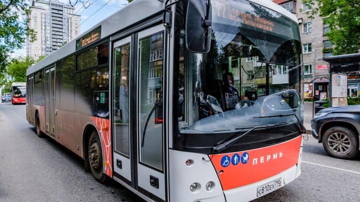У пермских автобусов сократят количество рейсов и остановок