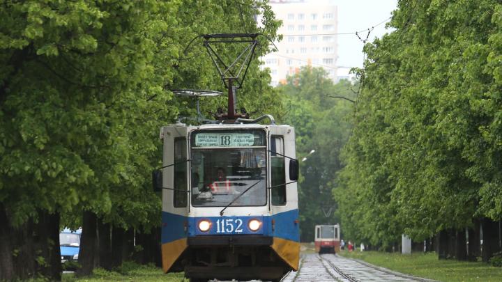 «Взяла деньги и не поехала»: уфимка возмутилась кондуктором трамвая, которая обманула пассажиров
