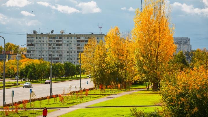 Осень в Кемерово невероятно красива. Публикуем 20 фото, которые это доказывают