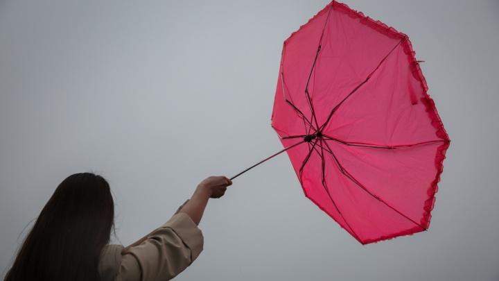 Ветер до 25 м/с: синоптики предупредили, что нас ждёт на майских праздниках