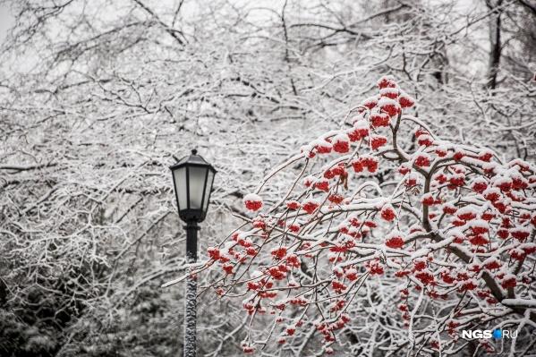 Судя по прогнозам на разных сервисах, снег будет идти довольно часто