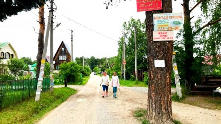 Убийство на улице Светлой: мальчишник в дачном посёлке под Новосибирском закончился стрельбой