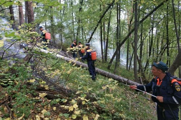 Пожар на Тургояке начинался с одного гектара, однако из-за особенностей ландшафта подъехать техника к очагу не может. В итоге площадь выросла до 120 гектаров