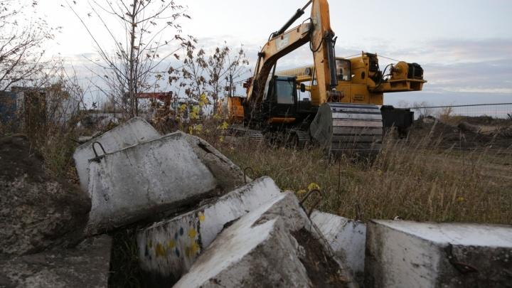 Из-за строительства нового омского кадетского корпуса срубят 550 деревьев