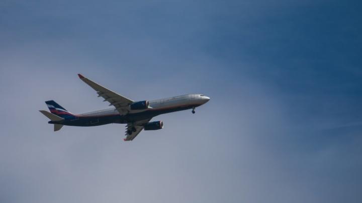 Работница авиакассы аннулировала проданные билеты и забирала деньги себе