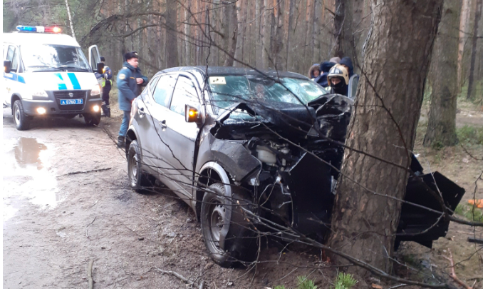 Разбился, врезавшись в дерево: смертельное ДТП произошло в Ярославской области