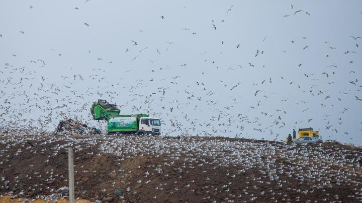 Как строят мусороперерабатывающий комплекс под Ростовом