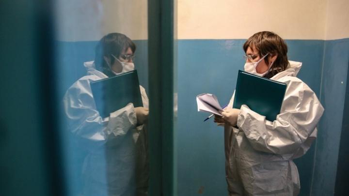 Число заболевших коронавирусом в крае выросло до 85 человек