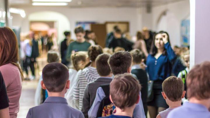 Знания делают деньги: публикуем список самых состоятельных директоров самарских школ