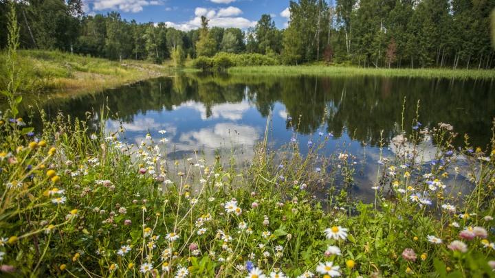 Кузбасский Роспотребнадзор назвал опасные для купания водоемы
