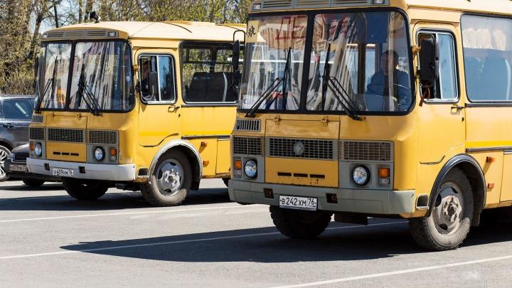 100 человек ушли в неоплачиваемый отпуск: перевозчик в Ярославле рассказал, как загибается бизнес