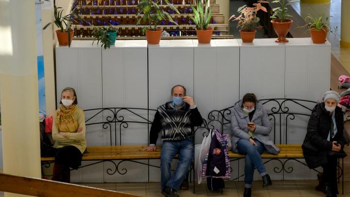 В Архангельской области выявили 339 случаев COVID-19 за последние сутки