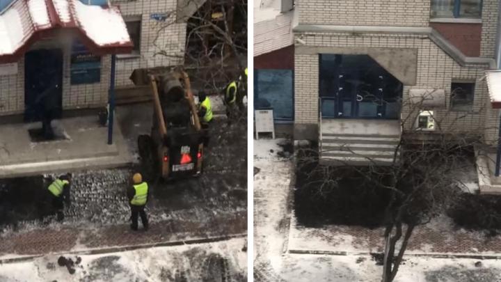 В Архангельске сняли на видео, как на брусчатку укладывают асфальт