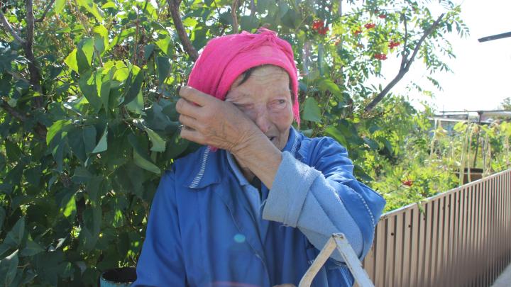 «Мы обязательно справимся»: репортаж из Иртышского, где уничтожили полтора миллиона птиц
