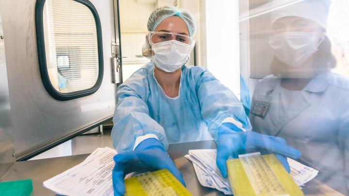 В Кузбассе количество подтверждённых случаев COVID-19 превысило 1000