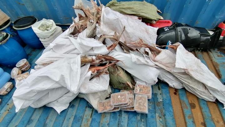 На Енисее задержали теплоход с краснокнижной рыбой на 5,7 миллиона