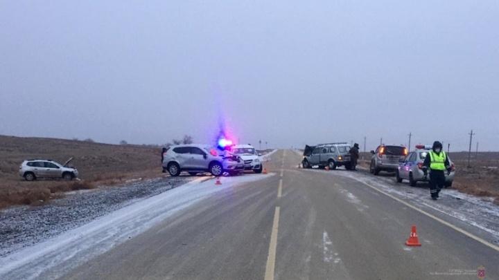 Во всем виновата лошадь: нелепая авария на трассе Волгоградской области собрала четыре машины